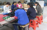 Assembly and packing line