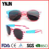 Fashion sunglasses(AF001)