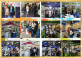 Some Abroad Exhibitions For BR SOLAR