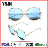 Fashion sunglasses(5442)