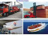 Efficient shipping broker for Halifax,Canada