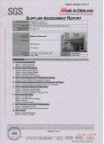 SGS Audit Report 2