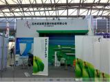 Shanghai Fairs in 2011 year