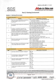 SGS Assessment Report (12 in 17 pages)