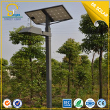 3M-6M Pole 5W-30W Solar Courtyard Lights