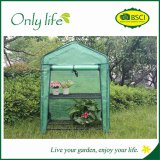 2 shelf greenhouse