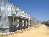 Great Price Steel Structure Prefabricated Chicken House