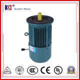 Embr AsynchronousAC Electric Brake Motor for Chemical Engineering Machinery