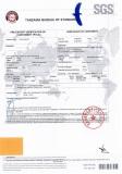 SGS Certificate for Tanzania Galvanized Steel coils