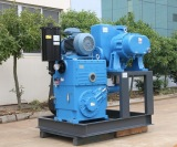 Roots Rotary Piston Pump System