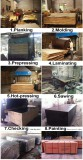 Film Faced Plywood Process