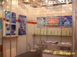 Trading Show