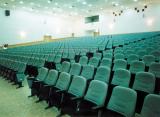 Auditorium Chair Project Sample Item 1110