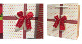 Double ribbon bow on gift bag