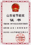 Shandong province energy saving Award