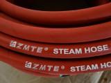 steam hose