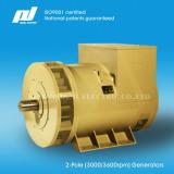 2-Pole 50/60Hz (3000/3600rpm) High Speed Brushless Generators
