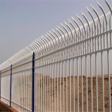 New product low cost long time use Zinc steel tube wire mesh fence