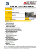 MIC on site audit report 2
