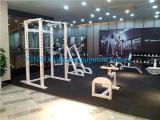 XP sereis gym