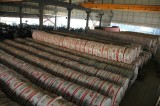 Warehouse of Stainlesssteel Coil