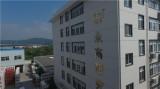 YONGGAO ERA research institute