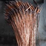 Copper Capillary Bulbs