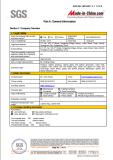 SGS Audit Report 3