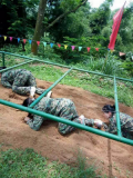 Company Staff Participate in Outdoor Training
