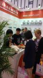 Nanjing Exhibition show