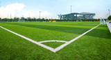 Artificial Turf for Olympic Sports Center