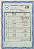 European Union customs credetials 2
