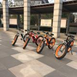 2017 Outside View For MTB Fat Tire E Bike