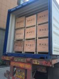 load to container of die cutting machine , paper guillotine