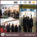 2012 Xiamen Stone Fair