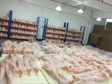 Professinal production line