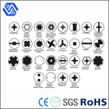 All kinds of head security bolts, stainless steel high tensile bolt nut