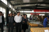 The government take a visit to our factory on July 18th,2015.