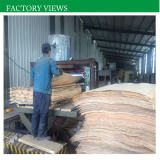 Our Company′s Factory