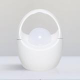 LED Promosional Gift Lighting