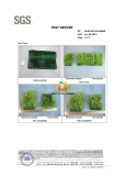Light aging test according to ISO for synthetic turf