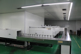 Auto coating painting line