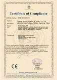 Metal Halide Lamp CE certificate