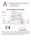 Skin care and body slimming machine CE Certification