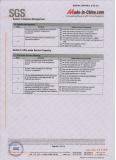 SGS Audit Report 6