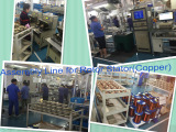 Assembly Line for Rotor & Stator (Copper)