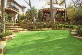 grass for house backyard and frontyard decorations