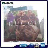 PVC Billboard Mesh Fabric Display Banner (1000X1000 9X9 370g)