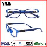 TR90 optical frames(11914)
