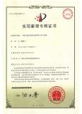 patent 5